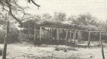 Vieja escuela Nª 502 de Puente Negro, departamento Avellaneda, Shunko, destruída por la acción implacable del tiempo. 1981